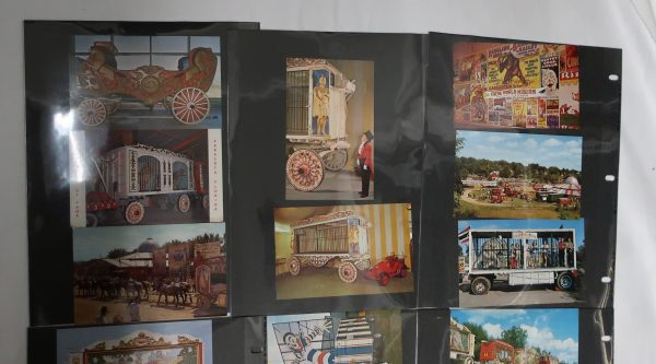 50 Plus Vintage Circus Postcard Collection